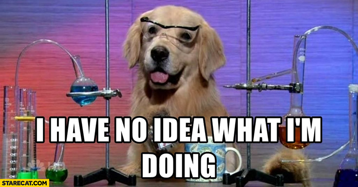 Dog I have no idea what I'm doing science chemistry