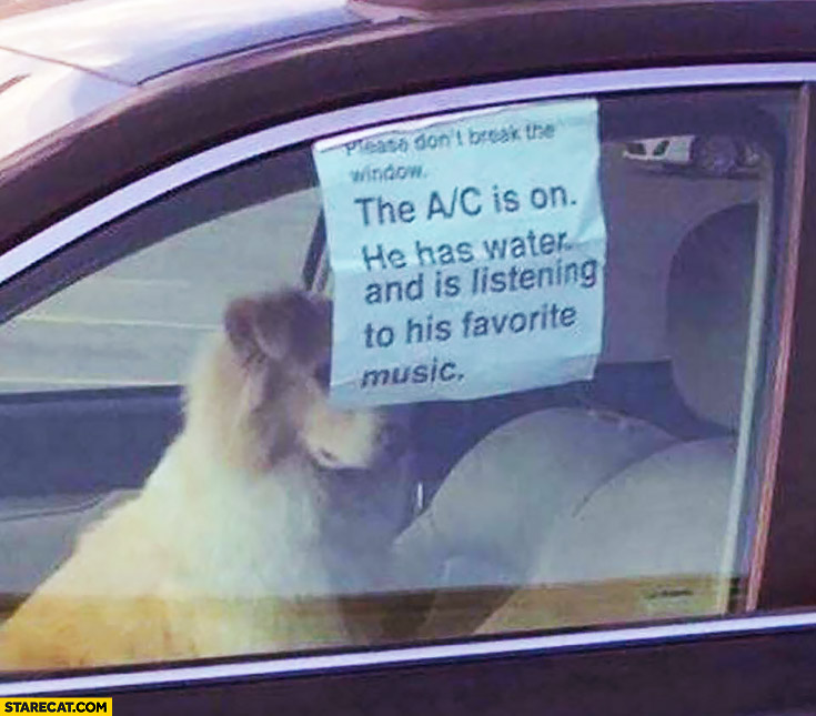 Dog in a car the A/C is on, he has water and is listening to his favorite music, please don't break the window