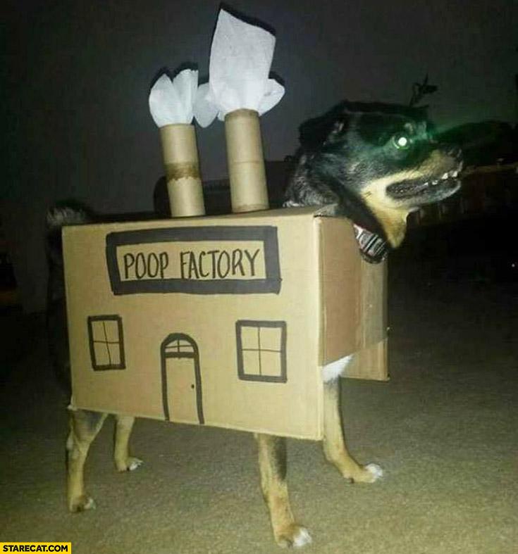 Dog poop factory creative cosplay cardboard box