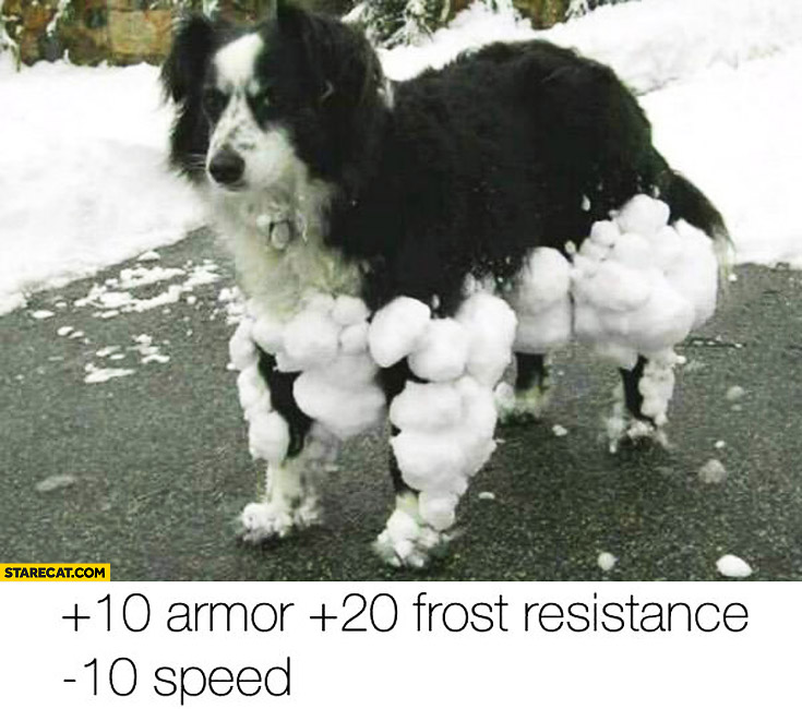 Dog snow extra attributes frost resistance armor