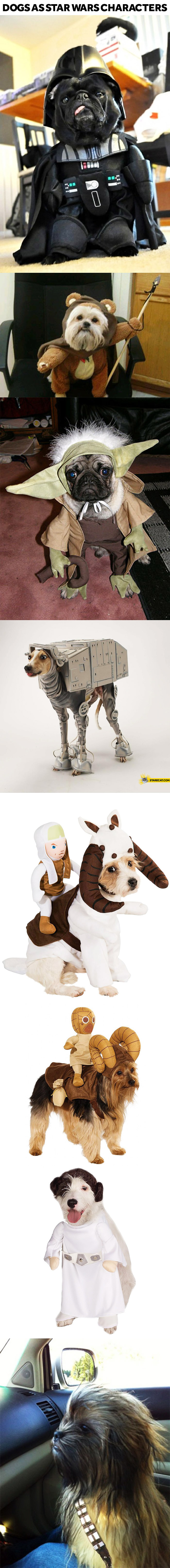 Dog versions of Star Wars characters cosplay costumes