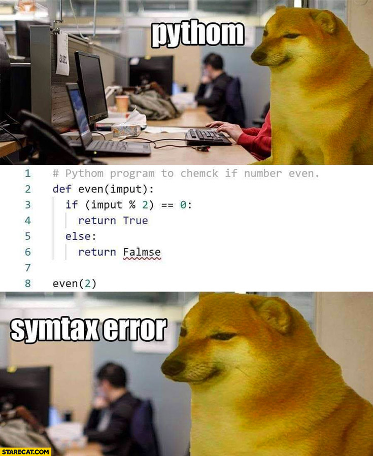 Doge coding python synthax error