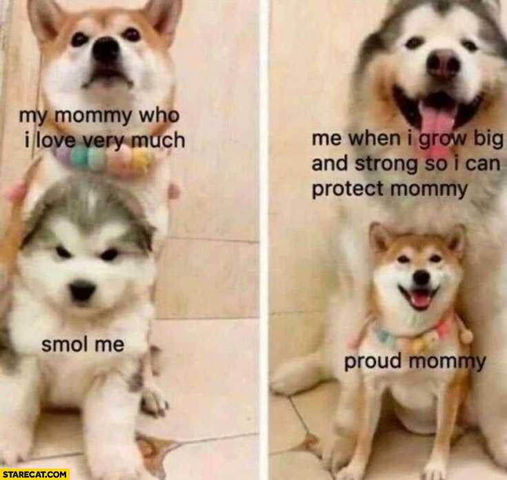 Doge dogs my mommy who I love very much, smol me, me when I grow big and strong so I can protect my proud mommy