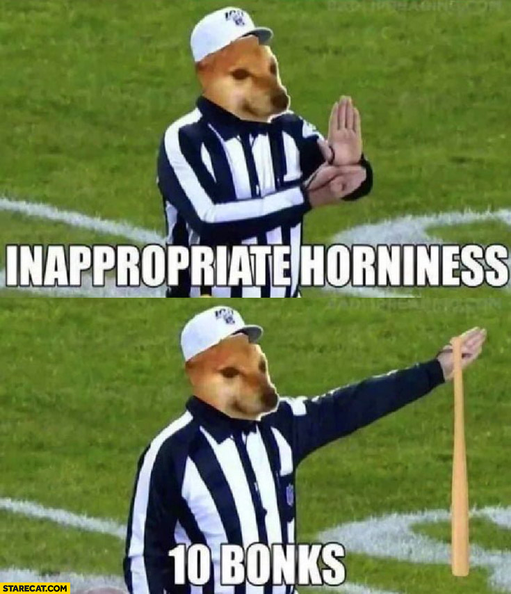 Doge inappropirate horniness 10 bonks referee penalty