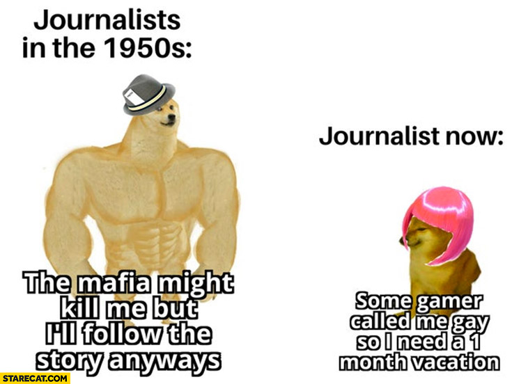 Doge journalists in the 1950s the mafia might kill me but I'll follow the story anyways vs now some gamer called me gay I need 1 month vacation