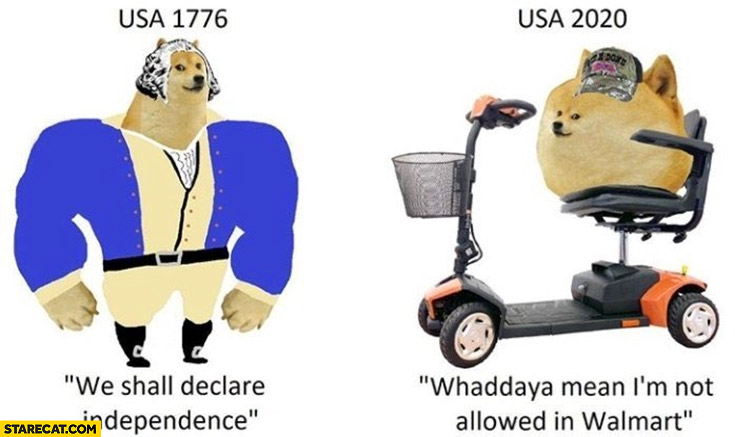 Doge USA 1776 we shall declare independence, USA 2020 what do you mean I'm not allowed in Walmart?