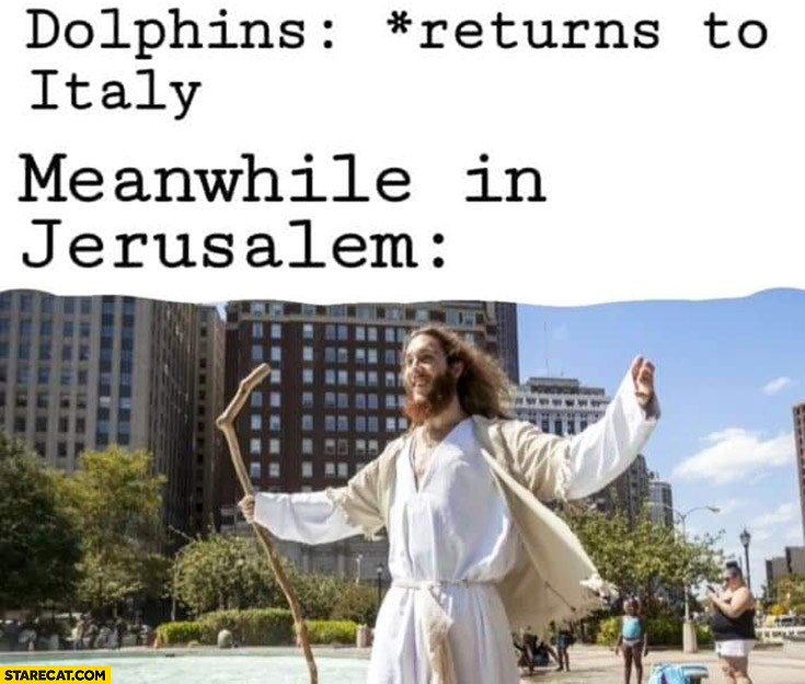 Dolphins are returning to Italy meanwhile in Jerusalem Jesus appears