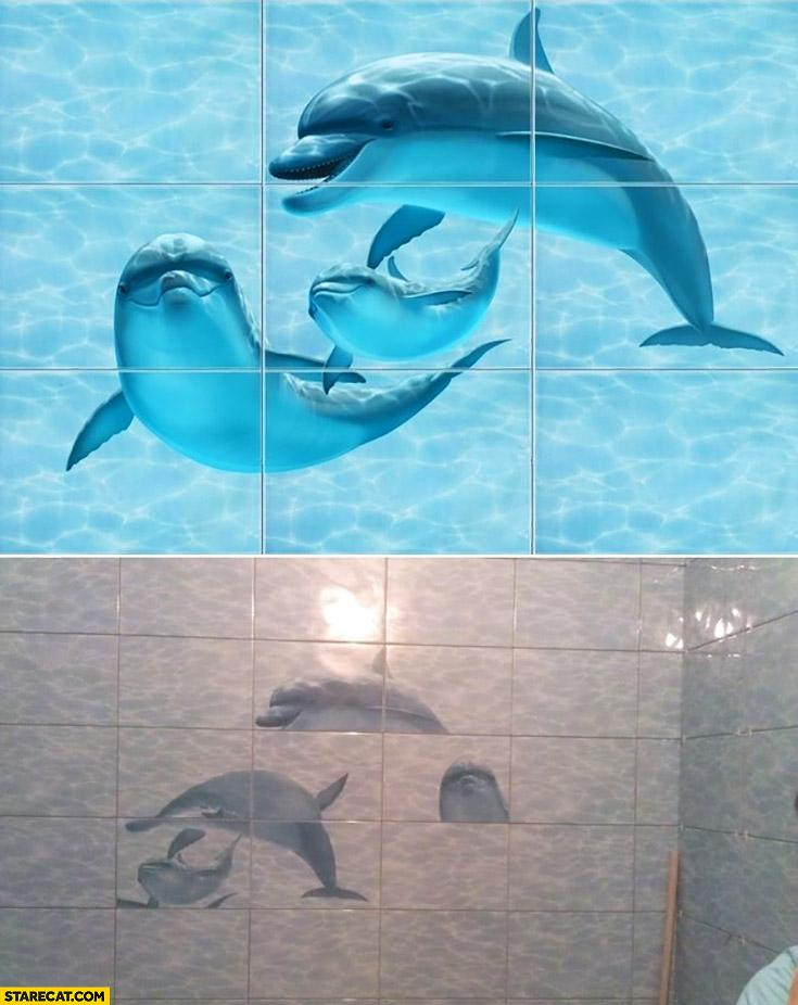 Dolphins bathroom tiles fail badly placed