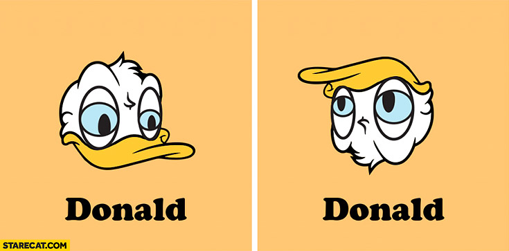 Donald Duck vs Donald Trump rotated hair