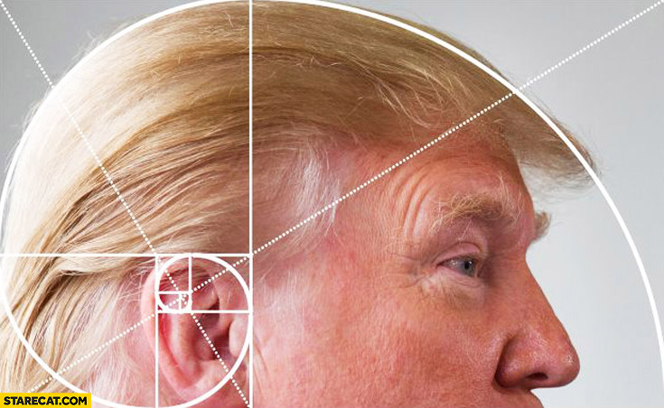 Donald Trump hair golden ratio