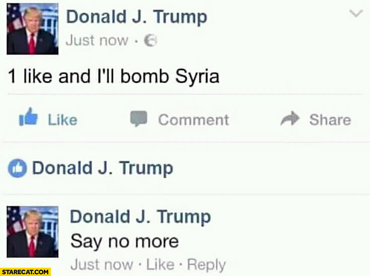 Donald Trump on facebook: 1 like and I'll bomb Syria, say no more, likes his own post