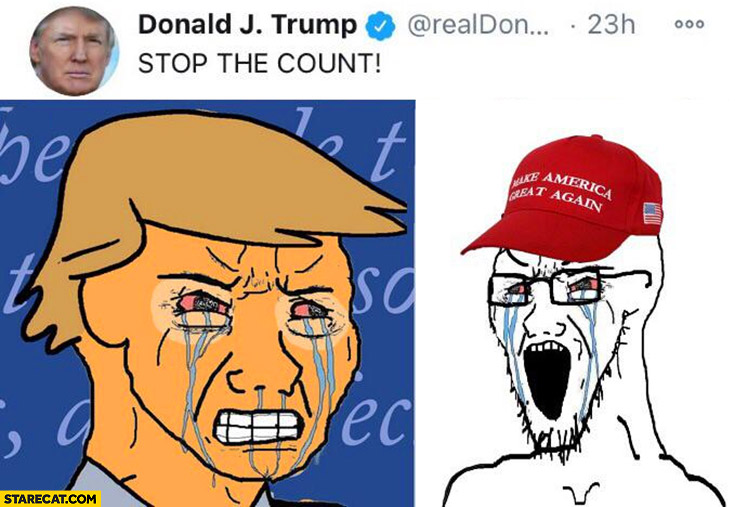 Donald Trump stop the count sad crying