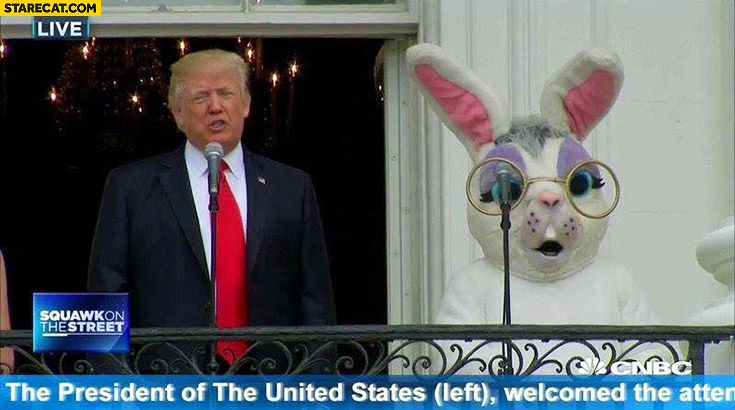 Donald Trump the president of the United States on the left tv caption trolling big bunny