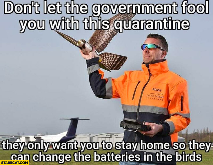 Don't let the government fool you with this quarantine, they only want you to stay home so they can change the batteries in the birds