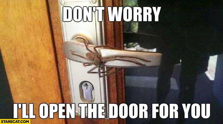 Don't worry I'll open the door for you giant spider