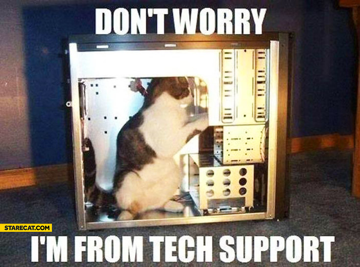 Don't worry I'm from tech support cat fixing computer