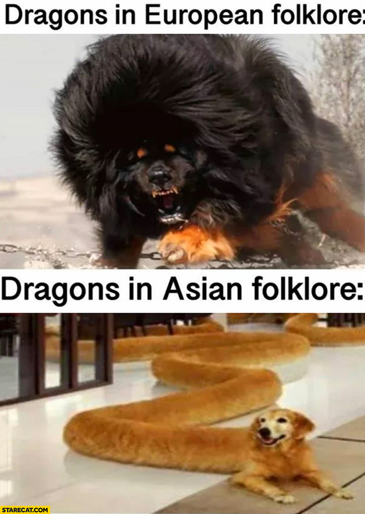 Dragons in European folklore vs dragons in Asian folklore dogs