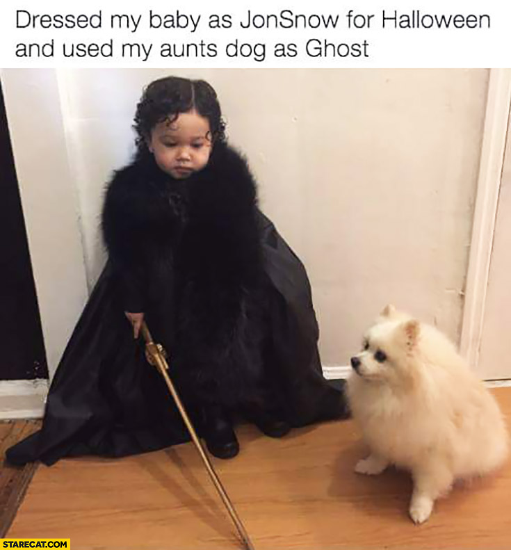 Dressed my baby as Jon Snow for Halloween and used my aunts dog as ghost