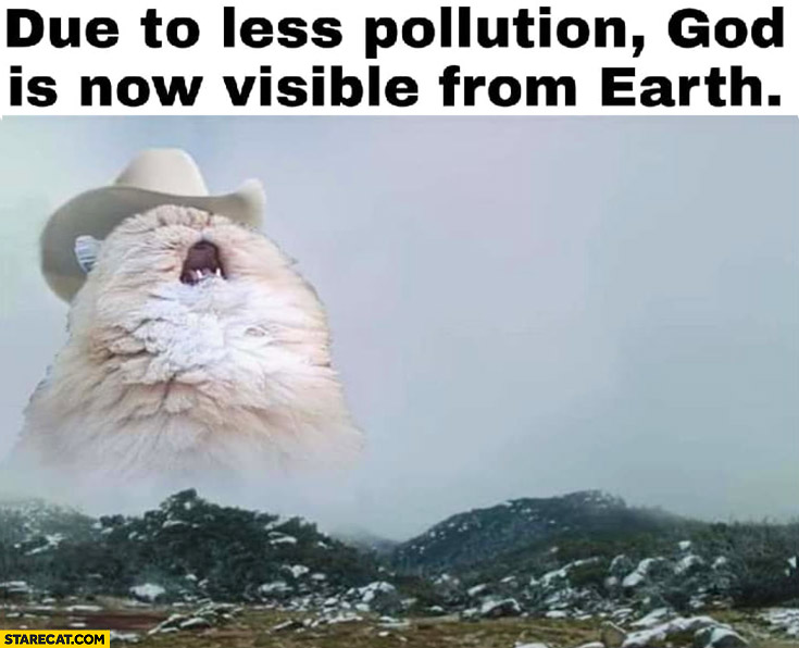 Due to less pollution God is now visible from earth giant cat wearing a hat