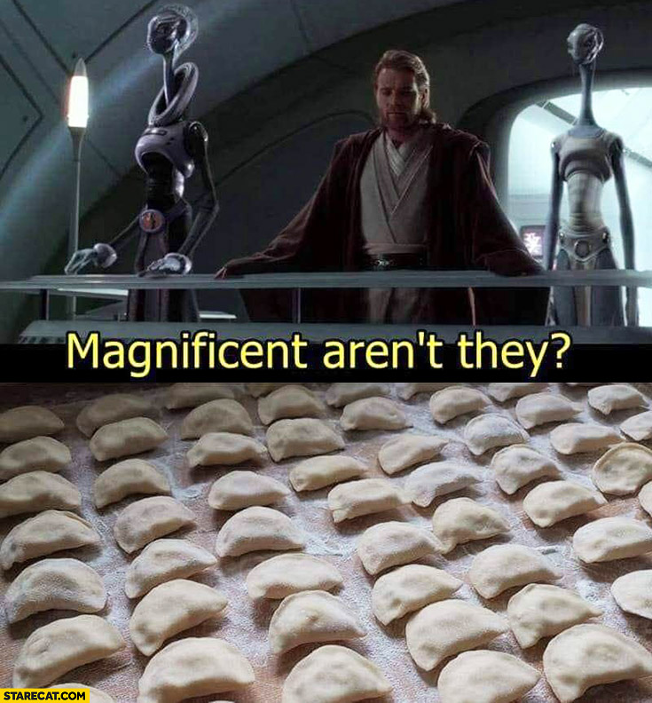 Dumplings magnificent aren't they? Star Wars