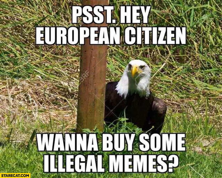 Eagle psst hey European citizen wanna buy some illegal memes?