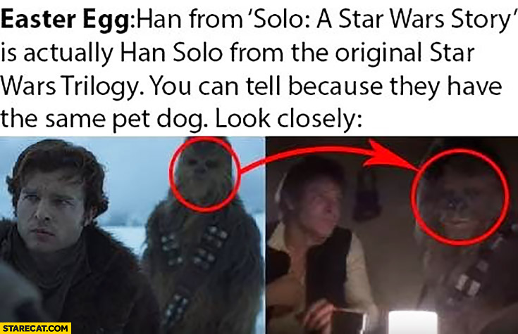 "Easter egg: Han Solo from ""Solo a Star Wars story"" is actually Han Solo from the original Star Wars. You can tell because they have the same pet dog Chewbacca"
