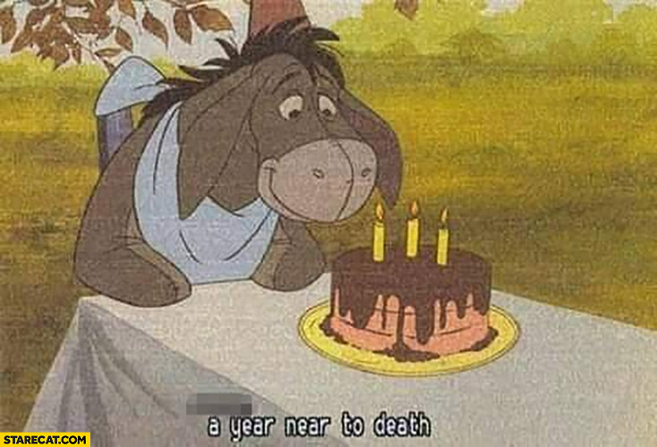 Eeyore birthday a year near to death winnie the pooh