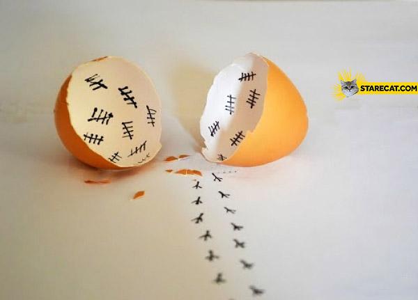 Egg as a prison