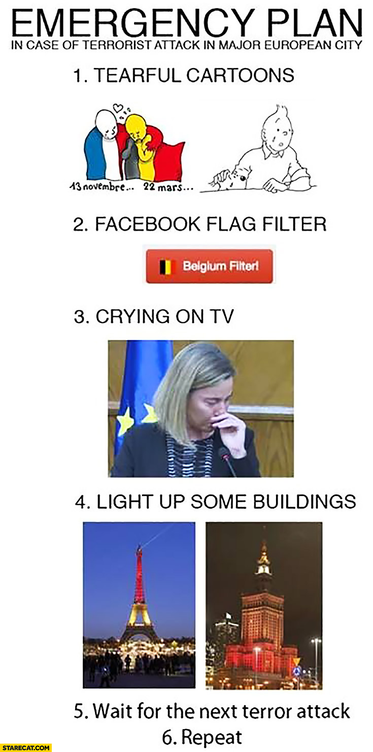 Emergency plan in case of terrorist attack in major European city: tearful cartoons, facebook flag, crying on TV, light up building, wait, repeat