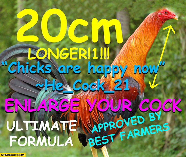 Enlarge your cock chicks are happy now silly word play