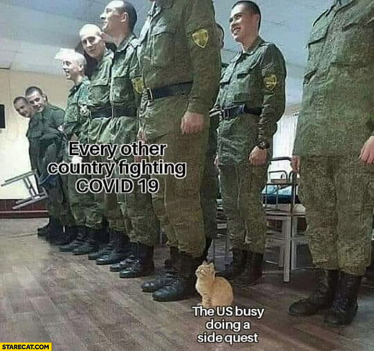 Every other country fighting Covid-19 soldiers, the US busy doing a side quest cute cat