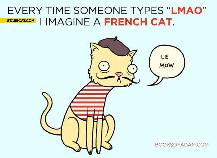 Every time someone types LMAO I imagine a French cat le mow