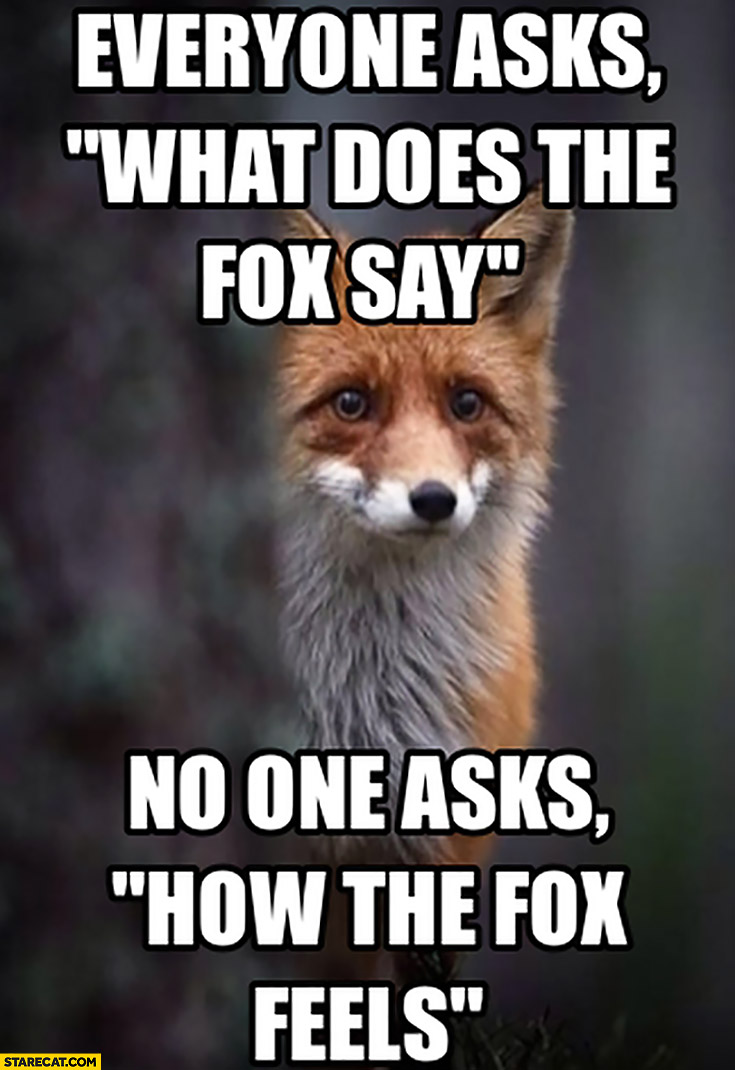 Everyone asks what does the fox say, no one asks how the fox feels