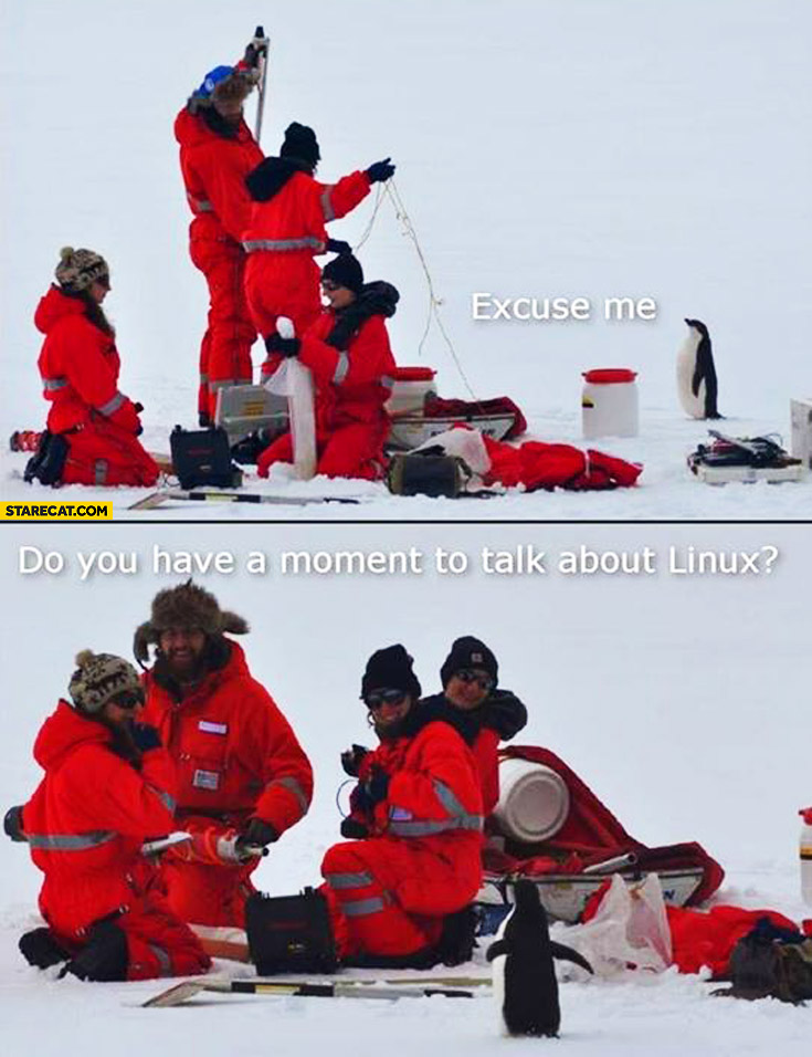 Excuse me do you have a moment to talk about Linux penguin