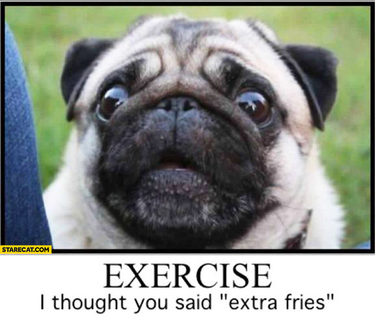 Exercise I thought you said extra fries pug