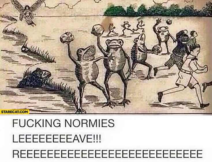 Fcking normies leave reee mad frogs