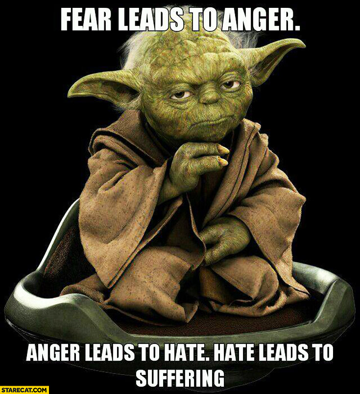 Fear leads to anger, leads to hate, leads to suffering Yoda quote