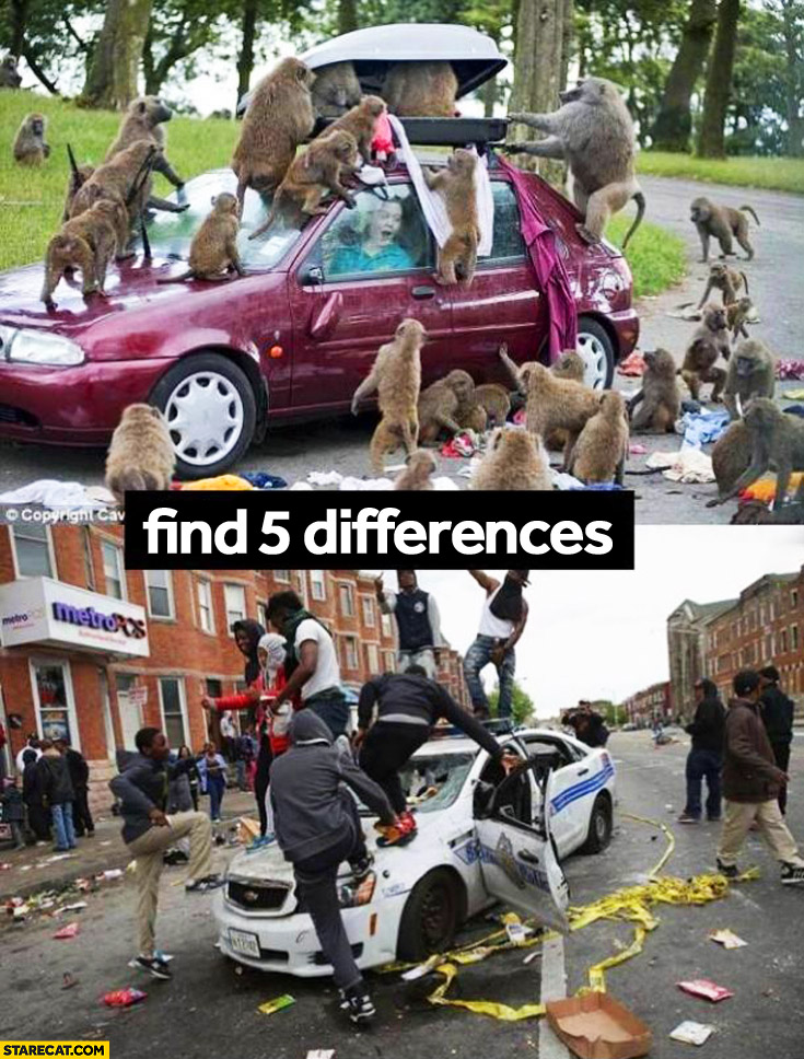 Find 5 differences: monkeys attacking car, USA riots black men