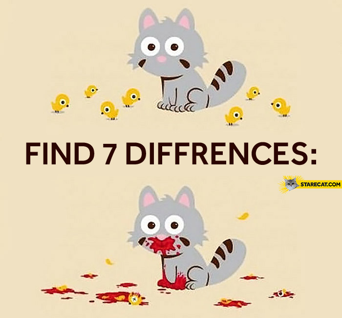 Find seven 7 differences cat birds