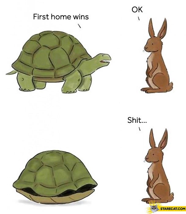 First at home wins shit rabbit turtle