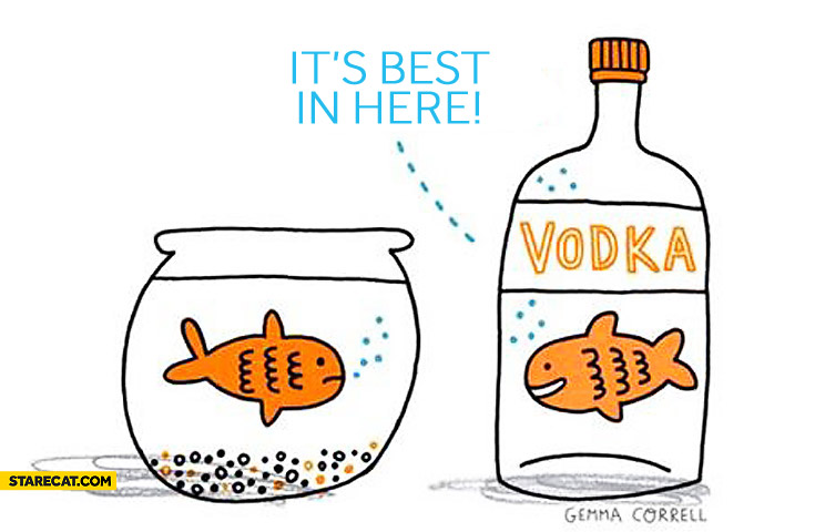 Fish in vodka