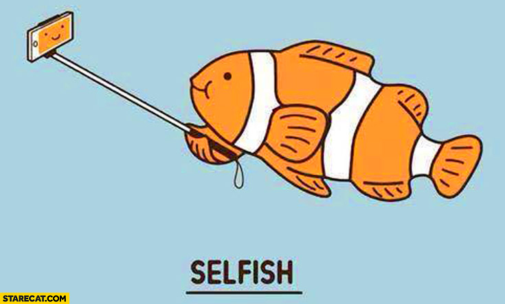 Fish with a selfie stick selfish