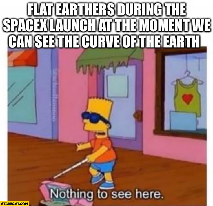 Flat earthers during the SpaceX launch at the moment we can see the curve of the earth nothing to see here Bart Simpson
