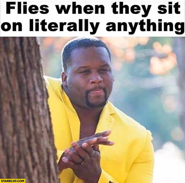 flies when they sit on literally  everything black man plotting