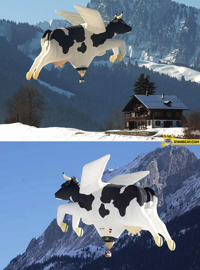 Flying cow hot air balloon