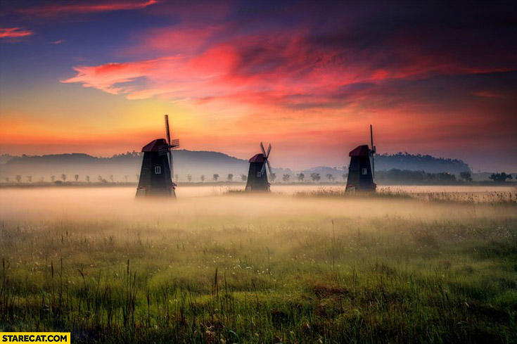Foggy morning fields in the Netherlands