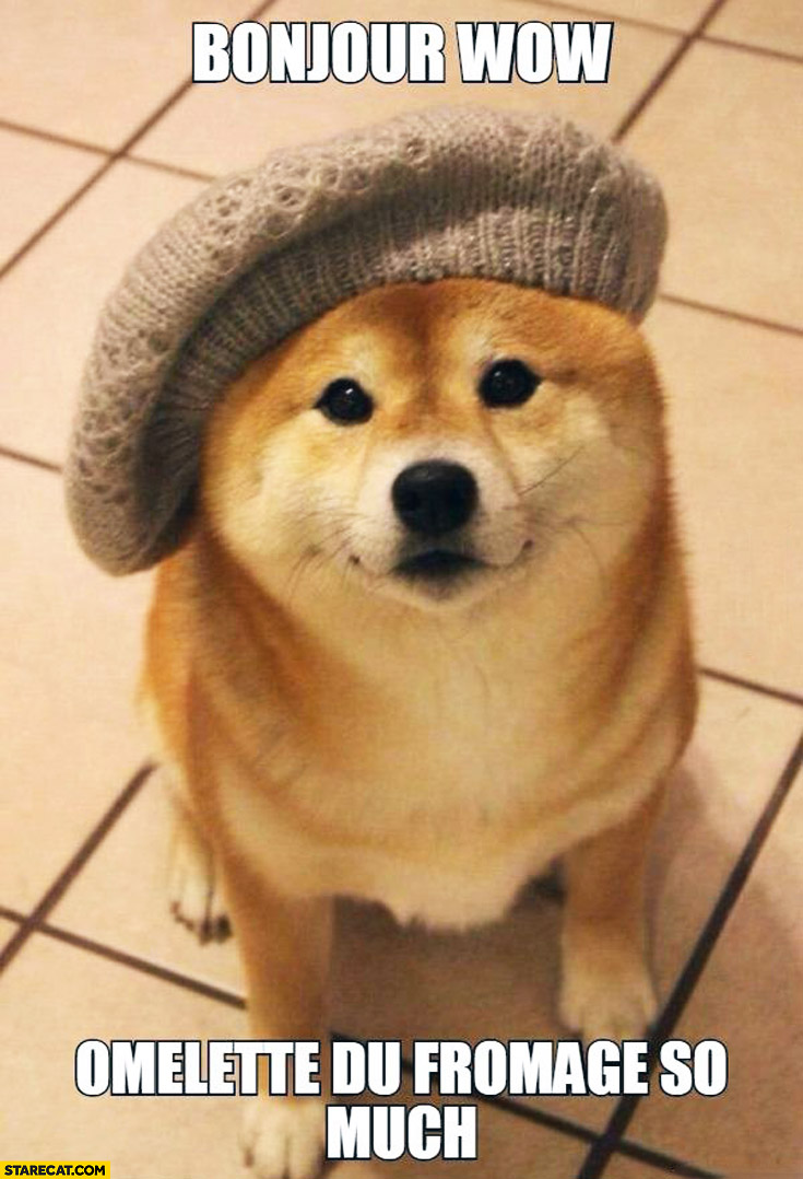 French Doge bonjour wow omlette du fromage so much