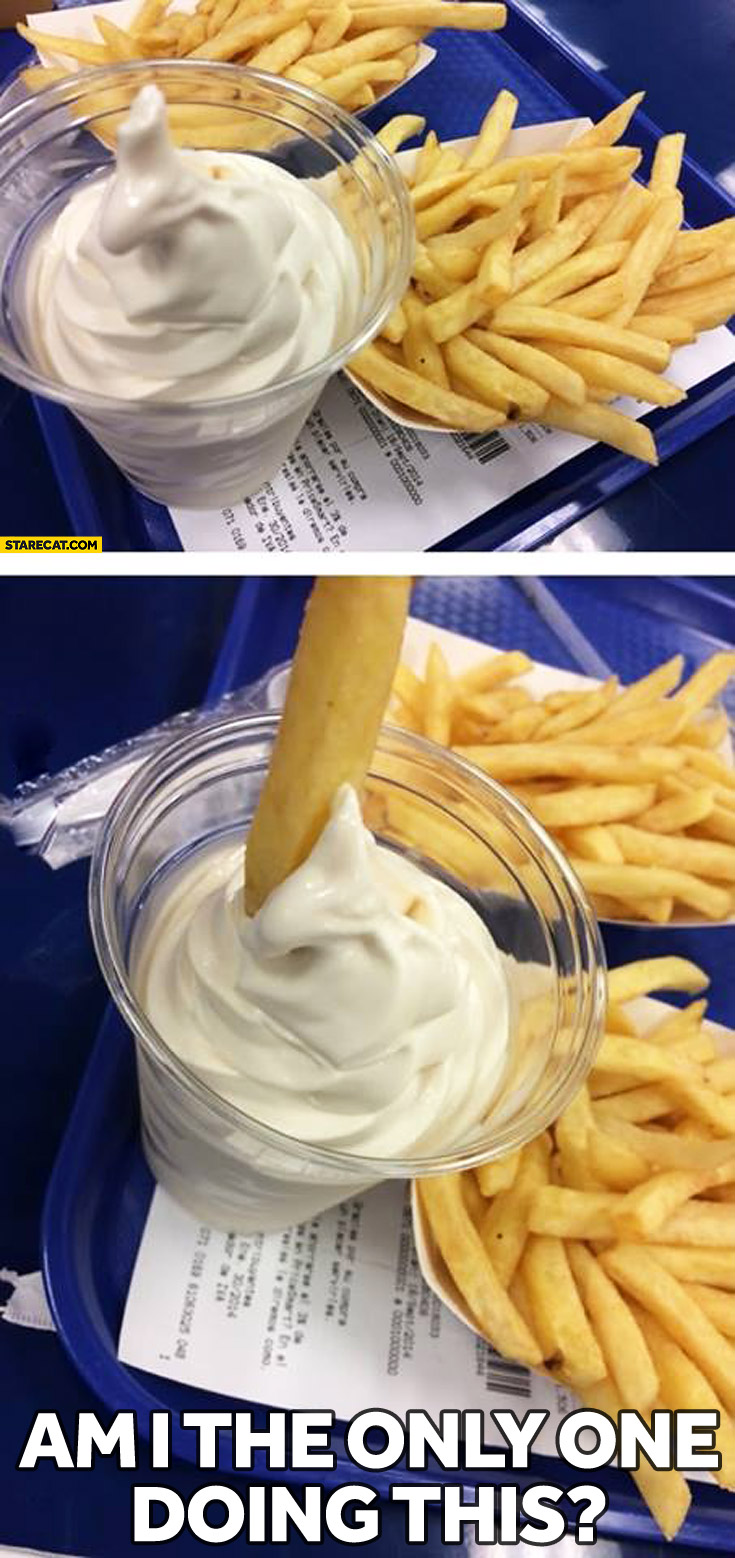 French fries in ice cream