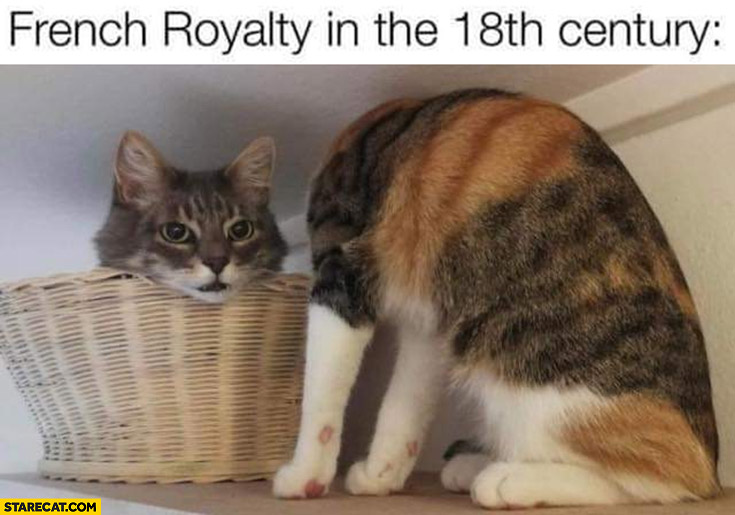 French royalty in the 18th century cat with head cut off