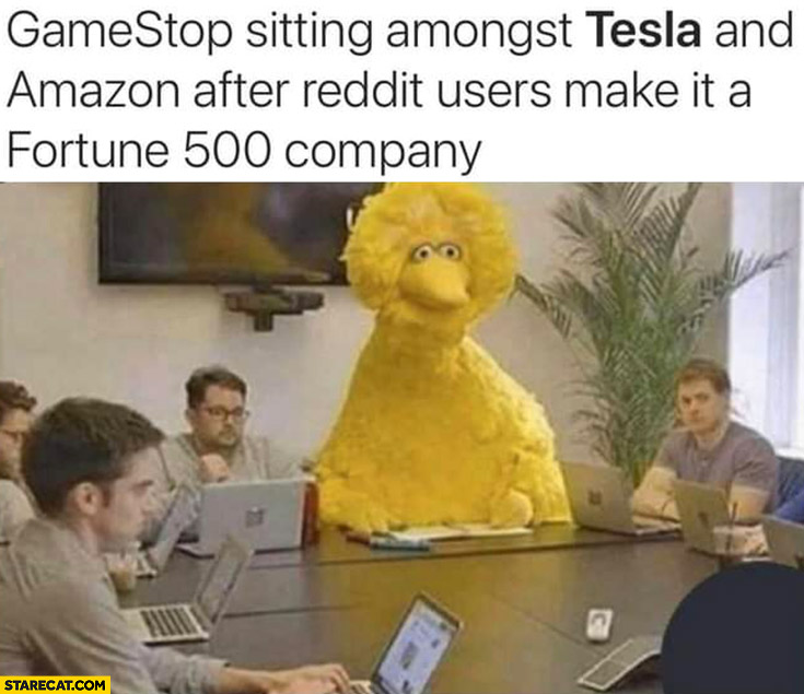 Gamestop GME sitting amongst Tesla and Amazon after reddit users make it fortune 500 company big bird yellow sesame street